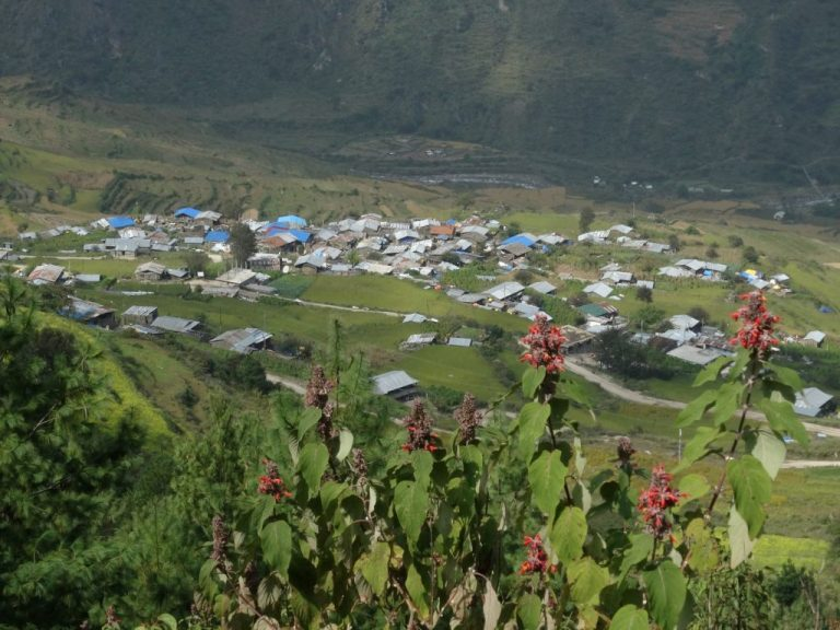 The Tamang Heritage Trail or the Langtang Valley Trek: Which Trek Should You Choose?